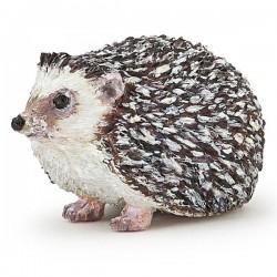 Hedgehog NEW 2019