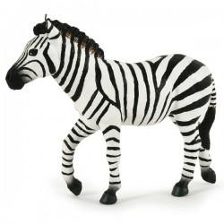 Male zebra NEW 2019