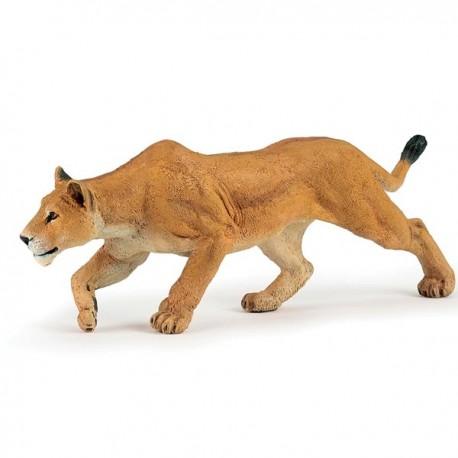 Lionne chassant