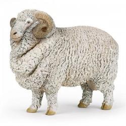 Merino sheep NEW 2019