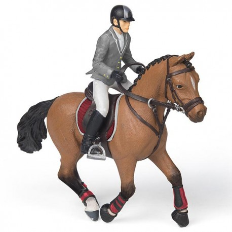 Competition horse with rider