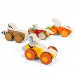 Woodland Race