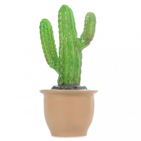 LAMP FINGER CACTUS IN POT