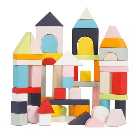 Building Blocks & Bag