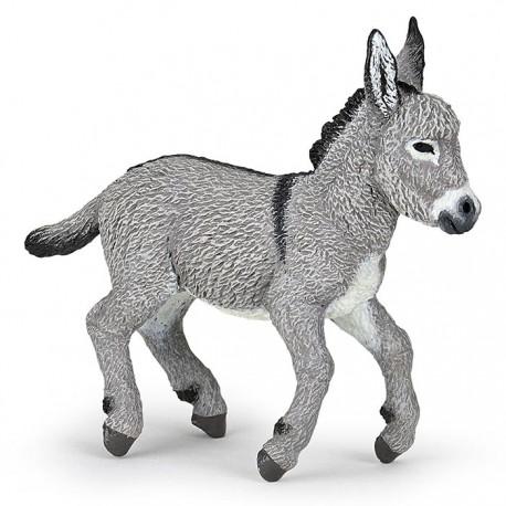 Provence donkey foal