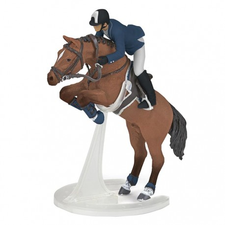 Jumping horse with rider