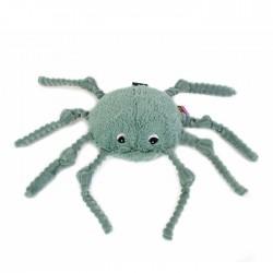 Ricominfou l'Araignée verte