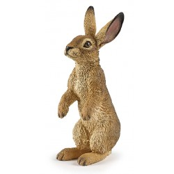 Standing hare