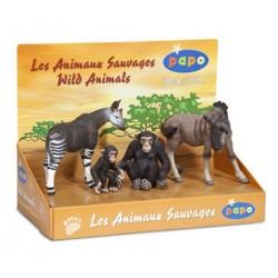 BOÎTE PRÉSENTOIR ANIMAUX SAUVAGES 1 (4 FIG.)