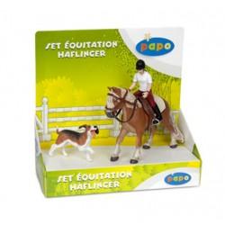 Boîte présentoir équitation - disc. 2012