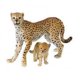 Cheetah with cub ***