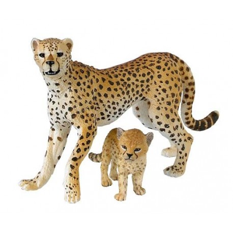 Guépard et son bébé