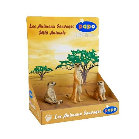 Display box 3 meerkats ***