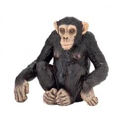 Chimpanzé retraité