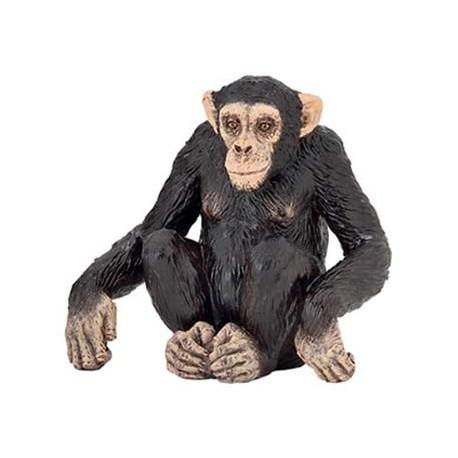 Chimpanzee***