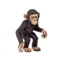 Bébé chimpanzé retraité