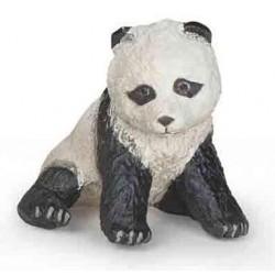 Sitting baby panda