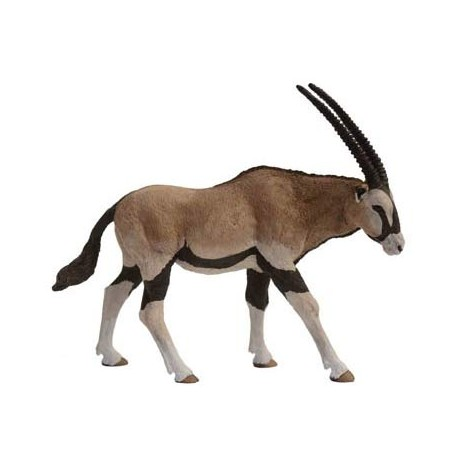 Antilope Oryx