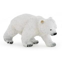 Bébé ours polaire marchant