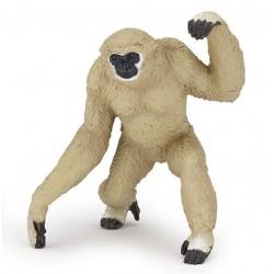 Gibbon retraité