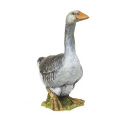 Perigord goose ***