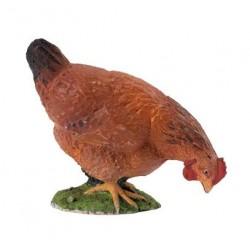 Pecking brown hen