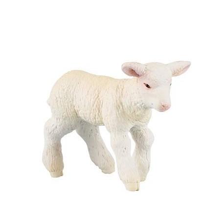 Merinos Lamb