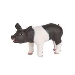 Cochonnet noir et blanc retraité