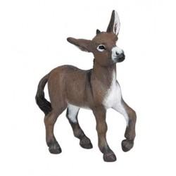 Donkey Foal ***