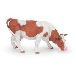 Vache simmental broutant