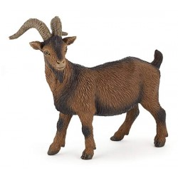 Brown billy goat