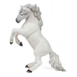 Cheval cabré blanc