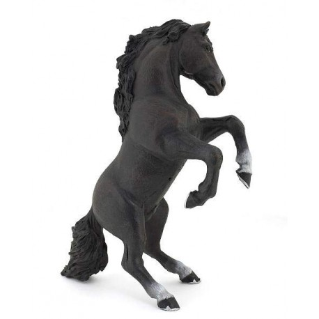 Black reared up horse