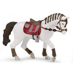 Trendy rider's horse