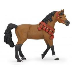 Cheval arabe en tenue de parade ***