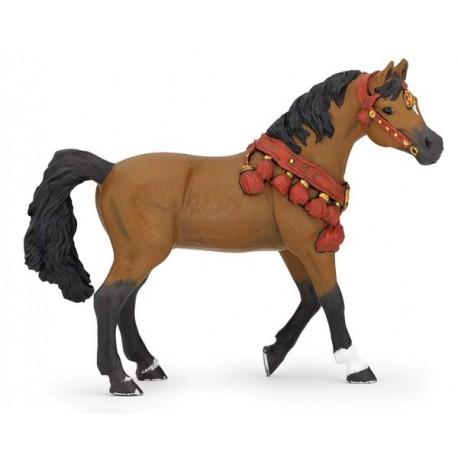 Cheval arabe en tenue de parade***