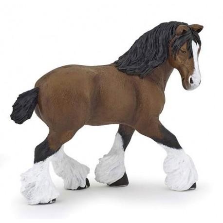 Bay shire horse mare