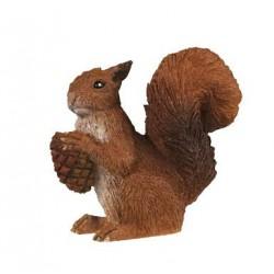 Squirrel ***