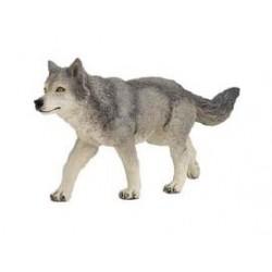 louve grise