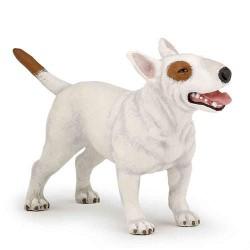 Bull terrier ***