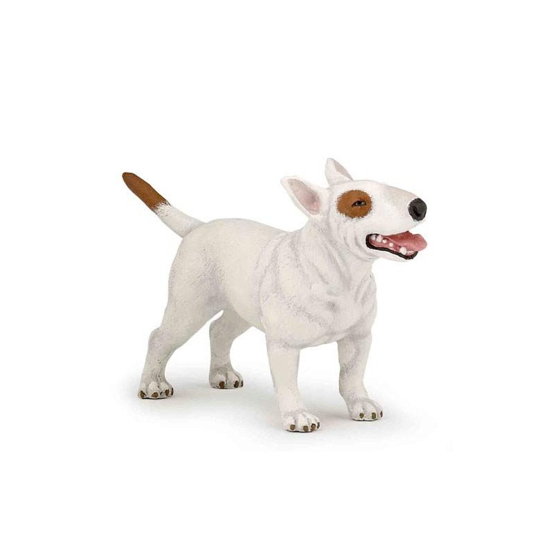 Bull terrier - Presse Commerce Distribution