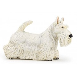 Scottisch Terrier