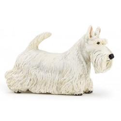 Scottisch Terrier