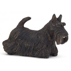 Scottish terrier noir