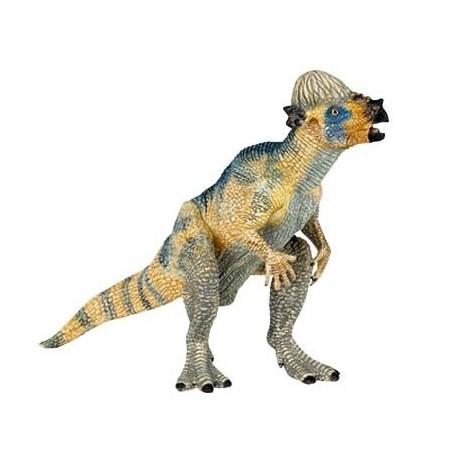 Bébé pachycéphalosaure