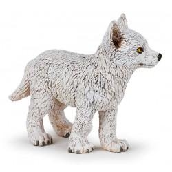 Jeune loup polaire Nouveau 2018